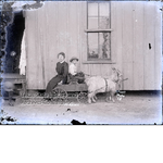 """""""All Aboard"""", woman and boy in cart pulled by goats"""