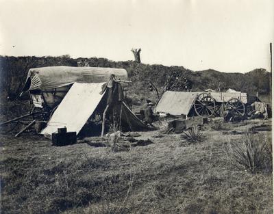 Buffalo camp scene, 1874